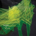 AccidentalSky_cover_1400pxWeb