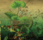 DAVE BALL JON SAVAGE - Photosynthesis - Hi res album cover for print